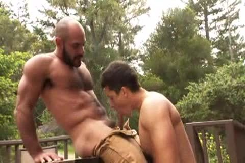 hirsute Muscle Bald Bear bonks Jay Roberts