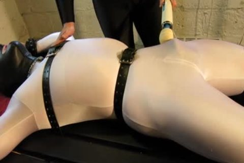 Our Live-in Pup Zathin Loooves To Be Tickled sort-of. So We Put Him In smth Stretchy, thonged Him Down, And Decided To watch How Much that guy Could Take! Half-way through, We Add A Sound-activated Electro Plug Just To Keep Things Interesting. Stay T