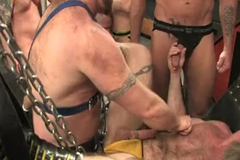 rod Wadd-Breeding Session extreme  orgy