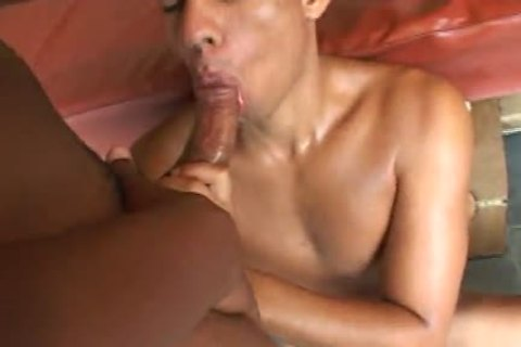 ebony Brazilians Breeding - Scene 1 - Mavenhouse