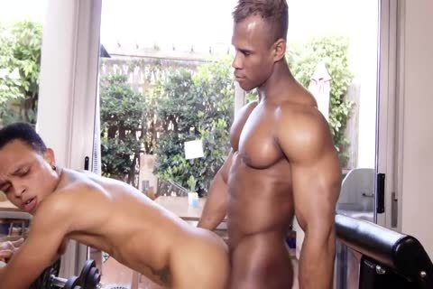 two-25 two  big Brown Bodybuilder's raw plow