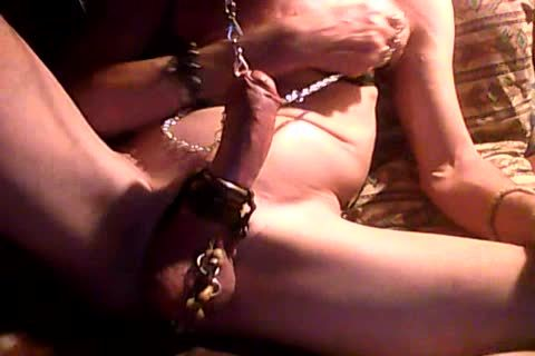 jerk off With chained nipples & dick