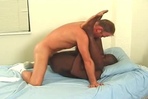 knob Addicted black chap Rides A monstrous throbbing knob
