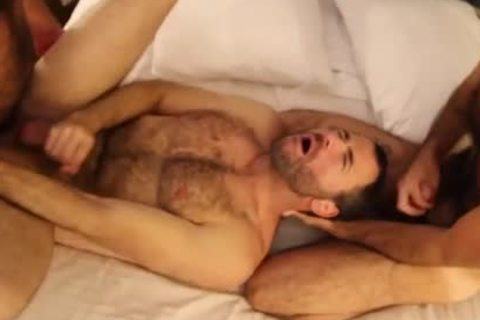 hairy Males three-some