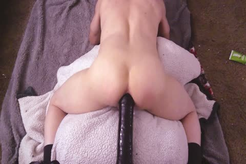 Pov From The Back anal